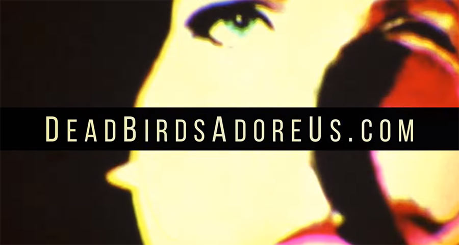 Dead Birds Adore Us promotional video Draygo Indianapolis Indiana Live Visuals VJ